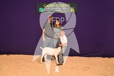 DO17-Caddo-5912