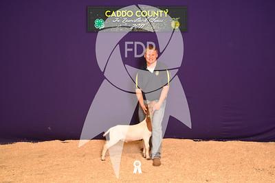 DO17-Caddo-5899