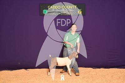 DO17-Caddo-5878