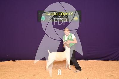DO17-Caddo-5865
