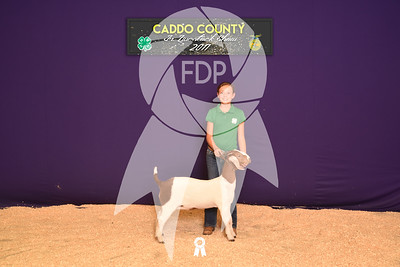 DO17-Caddo-5870