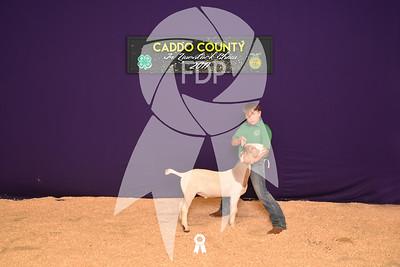 DO17-Caddo-5907