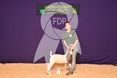 DO17-Caddo-5869