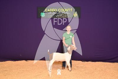 DO17-Caddo-5871
