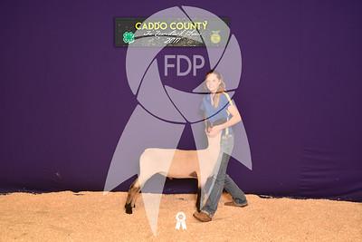 DO17-Caddo-5780