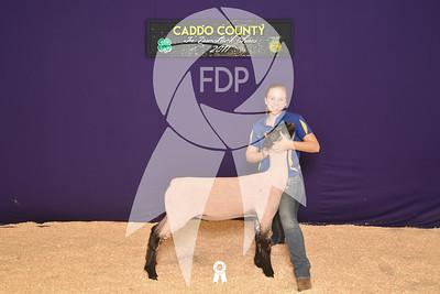DO17-Caddo-5767