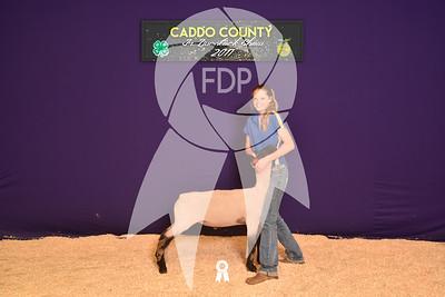 DO17-Caddo-5802