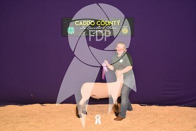 DO17-Caddo-5793