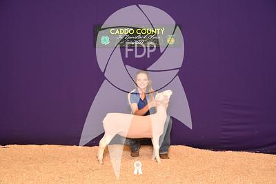 DO17-Caddo-5744