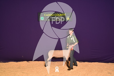 DO17-Caddo-5788