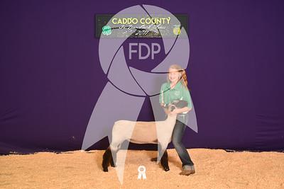 DO17-Caddo-5769