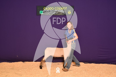 DO17-Caddo-5781
