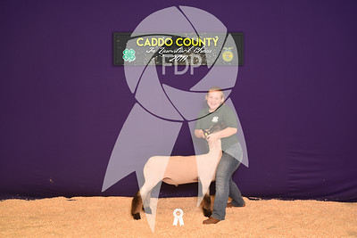 DO17-Caddo-5795
