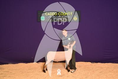 DO17-Caddo-5800