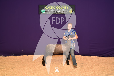 DO17-Caddo-5752