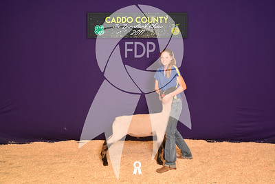 DO17-Caddo-5801