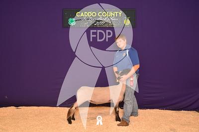 DO17-Caddo-5790