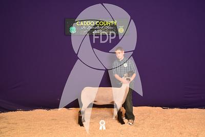 DO17-Caddo-5763