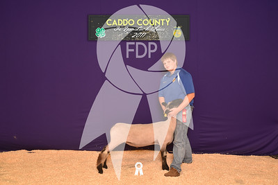 DO17-Caddo-5791