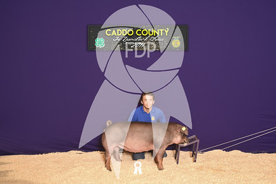 DO17-Caddo-5517