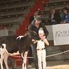 CalgarySpring17_Holstein_1M9A1446
