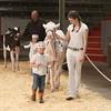 CalgarySpring17_Holstein_1M9A1439
