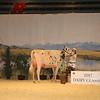 CalgarySpring17_Holstein_IMG_7951