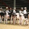 CalgarySpring17_Holstein_1M9A1187