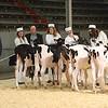 CalgarySpring17_Holstein_1M9A1186