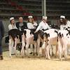 CalgarySpring17_Holstein_1M9A1185