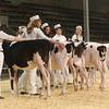 CalgarySpring17_Holstein_1M9A1195