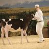 CalgarySpring17_Holstein_1M9A1188