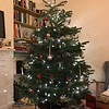Bryna and Martin's had set up the Christmas tree at Martin's apartment in London