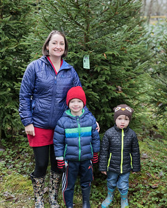Christmas Tree Hunting