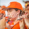 clemson-tiger-band-louisville-2017-16