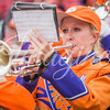 clemson-tiger-band-ncstate-2017-17