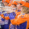clemson-tiger-band-ncstate-2017-16