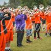 clemson-tiger-band-gt-2017-8