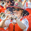 clemson-tiger-band-kentstate-2017-17