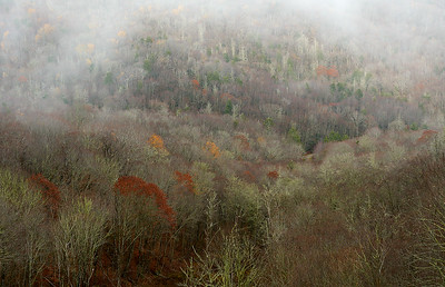 Late Fall on the Cherohala Skywayt