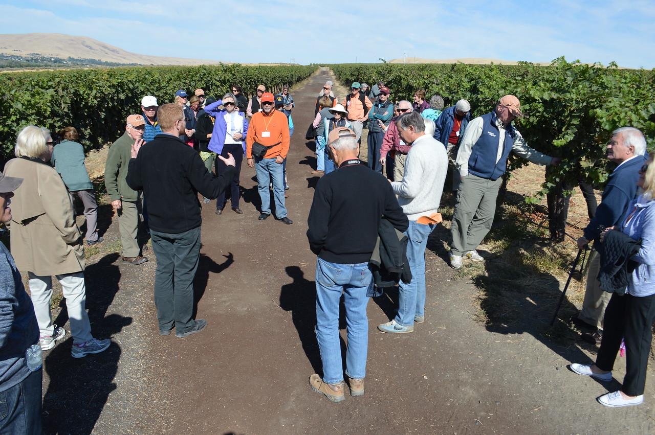 Terra Blanca Winery and Estate Vineyard - Cathy Phillips