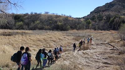A trail in the desert - Sonoran Desert, AZ