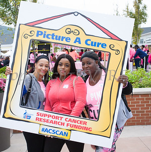 "Willa, Sashante and Janquel ""Picture A Cure"" as they joined thousands of people, including cancer survivors, their families and businesses, who participated in the annual American Cancer Society Making Strides Against Breast Cancer walk at Woodbury Common Premium Outlets in Central Valley, NY on Sunday, October 15, 2017. Hudson Valley Press/CHUCK STEWART, JR."