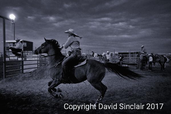 David Sinclair RR 18