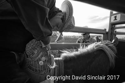 David Sinclair RR 16
