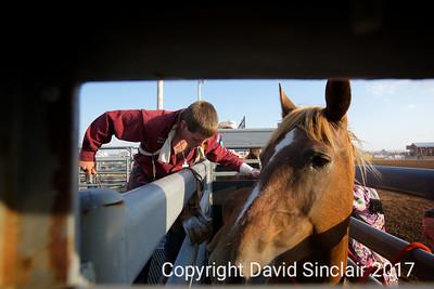 David Sinclair RR 14