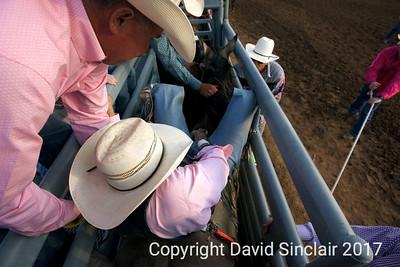 David Sinclair RR 15