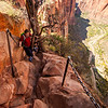 Tracy squeezes past a tree on the steep and narrow trail up Angel's Landing.
