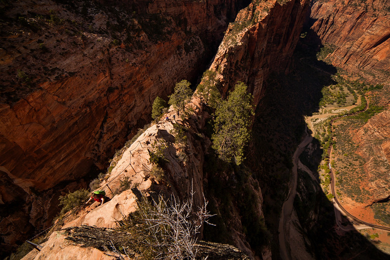 The Angel's Landing trail follows a skinny ridge of sandstone to reach its seemingly impossible summit.