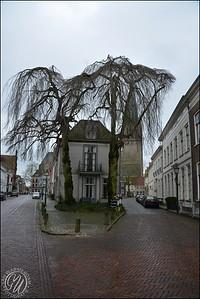 20170319 Doesburg GVW_1354